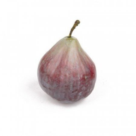 Artificial Fig with Stalk