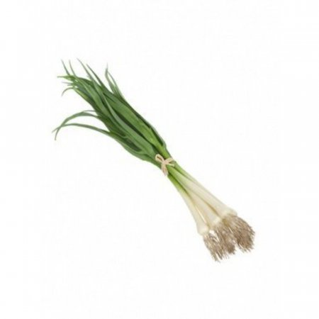Artificial Spring Onion Bundle